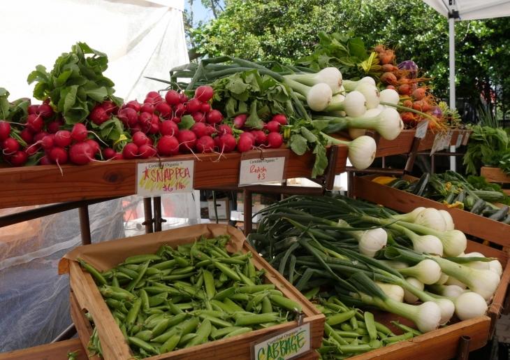 Berlin Farmers Market