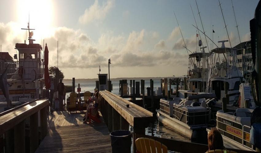 Tortuga Bay Fishing