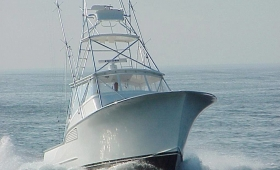 Spring Mix Charters