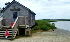 Assateague Island National Seashore - Bayside Drive-in Campground