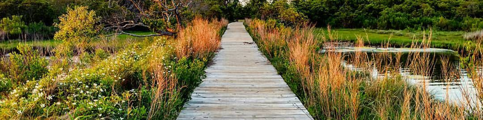 Fall Weekend Getaways on the Eastern Shore of MD
