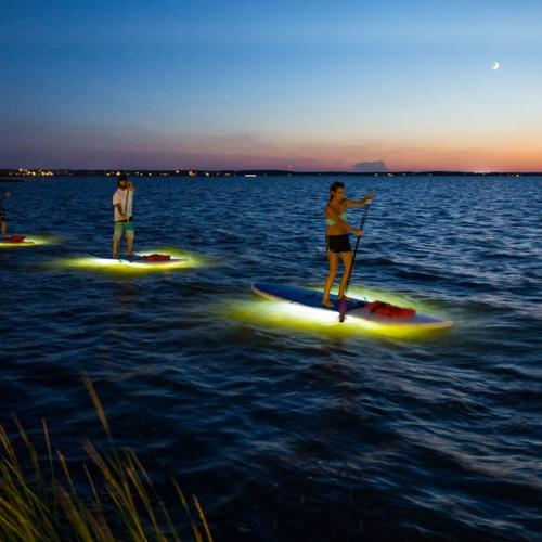 Standup Paddle the Assawoman Bay